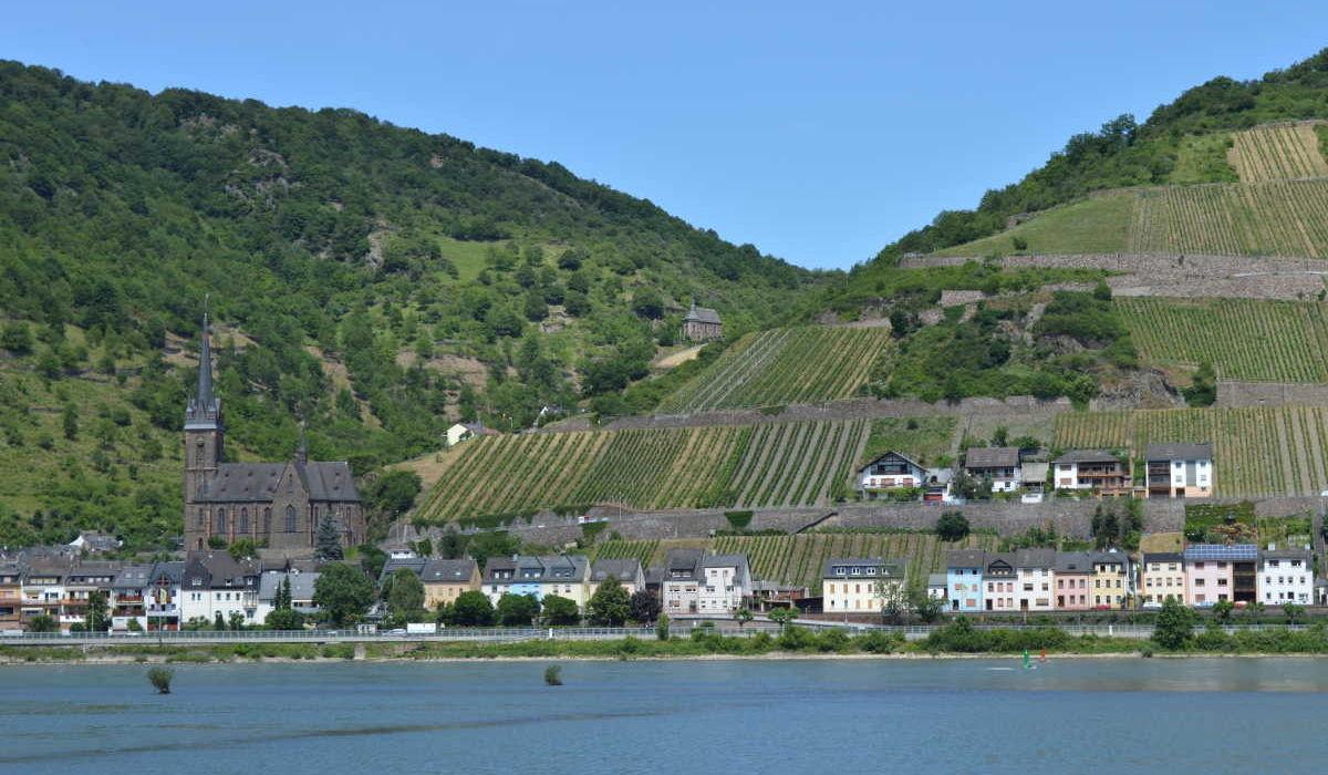 Blick auf Lorchhausen am Rhein mit der Rhein-Pension
